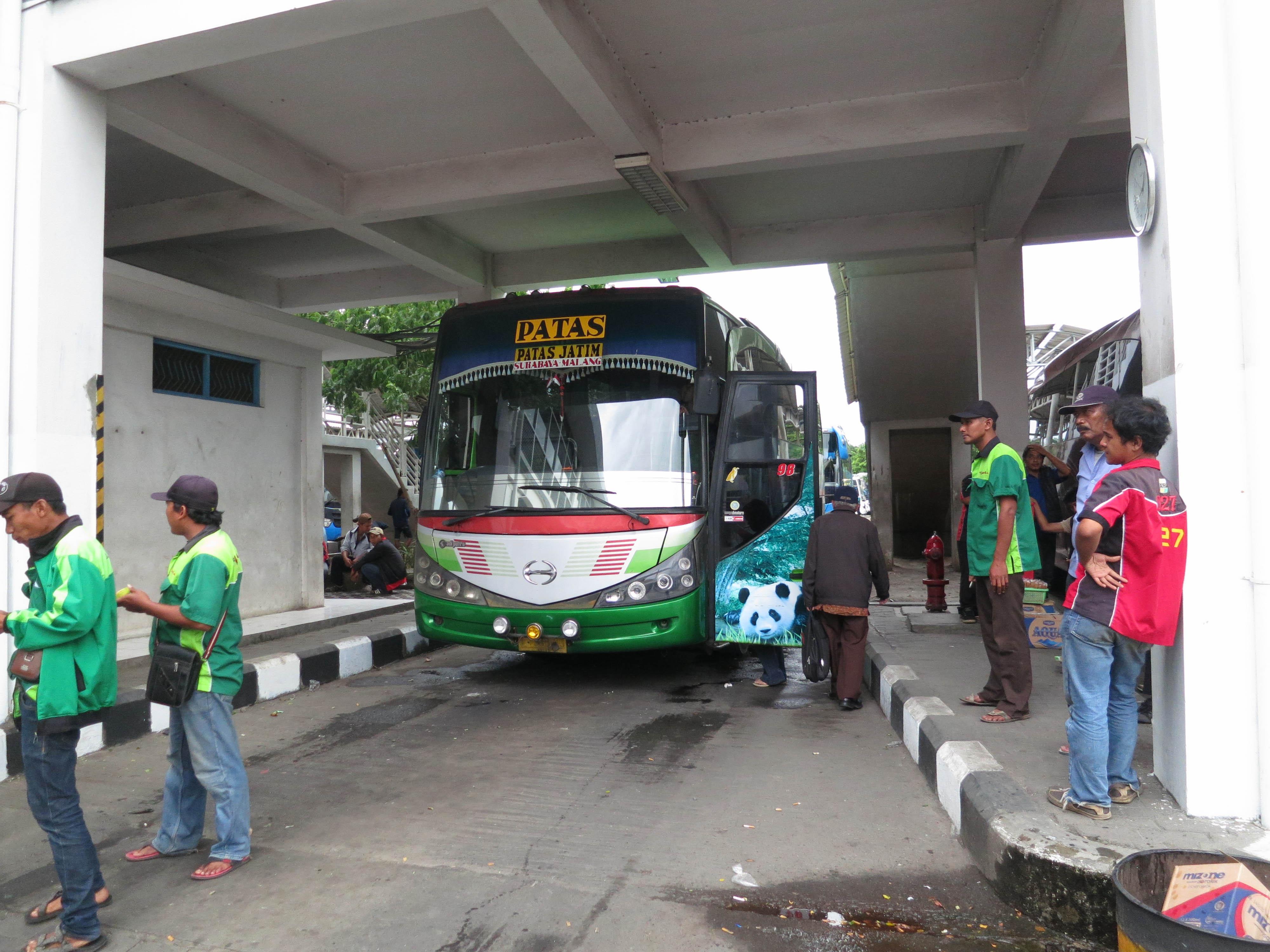Patas bus service